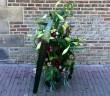 foto bloemenhulde 1 mei 2015 hooglandsekerkgracht