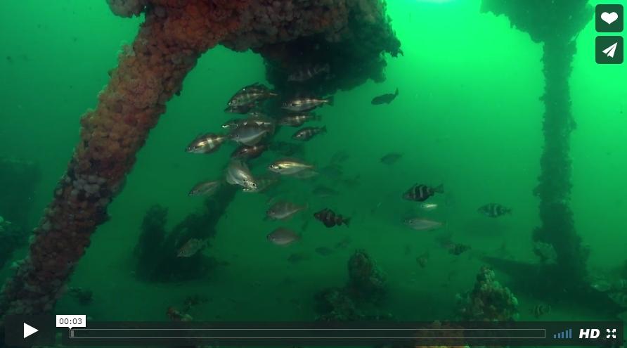 Videofilm over de scheepsramp